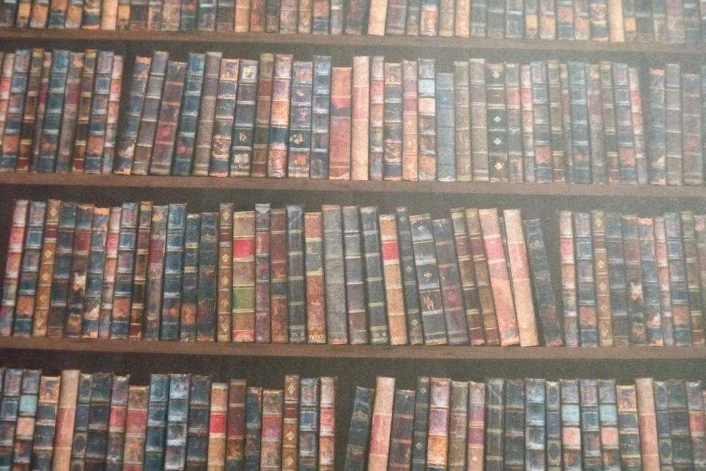 knihovna - fotokarton oboustranný - stejný motiv na obou stranách