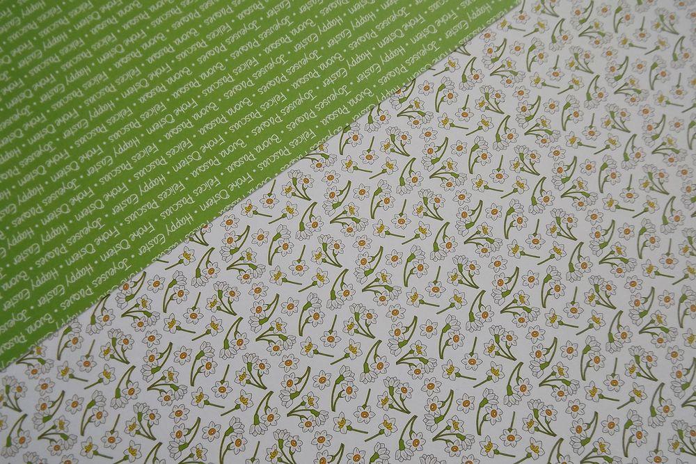 Jarní zelená s narciskami - fotokarton rub a líc A4