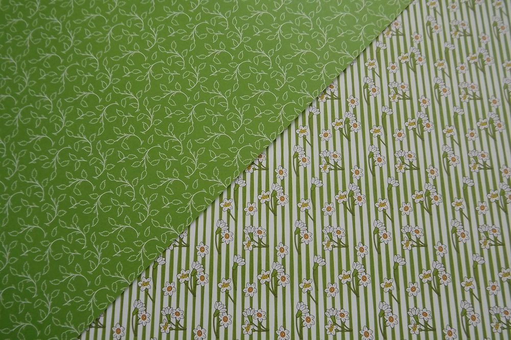 Jarní zelené pruhované s narciskami - rub a líc - A4