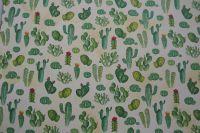 Kaktusy - fotokarton