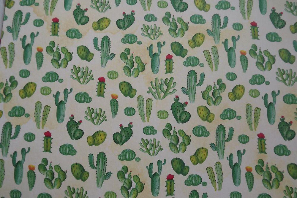 KAktusy - fotokarton - obě strany potištěné stejným motivem A4