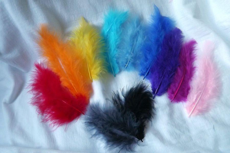 Sada z 11 kusů různě barevných pírek