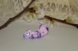 Zvětšit fotografii - Duhový chameleon
