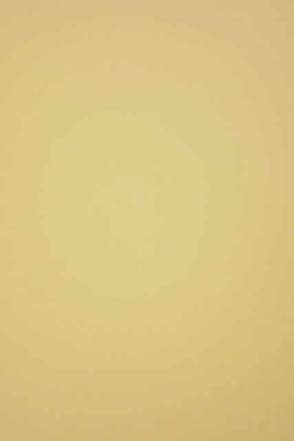 Fotokarton jednobarevný ZLATÝ MATNÝ- čtvrtka jednobarevná ZLATÁ - bez potisku, 300g - vhodný na scrapbook, cardmaking, koláže, A4, přání, visačky, záložky