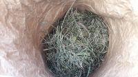 Ručně sušené luční seno 4kg rok sklizně 2020 z louky na Andělské Hoře z Rozkvetlého Statku